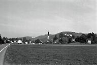 Reiden 1981