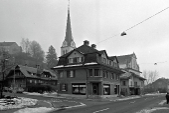 Mitteldorf 1982