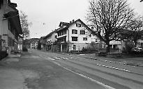 Mitteldorf 1983