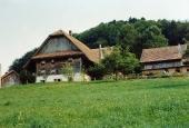 Hölzli 1991