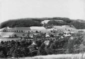 Moos 1900