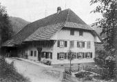 Pinte Weber 1911