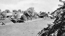 Richenthal 1950 Hinterlinig